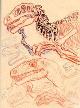 Raptor_Sketch_02