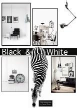 Black and white - van basis appartement naar stoer mannenhuis