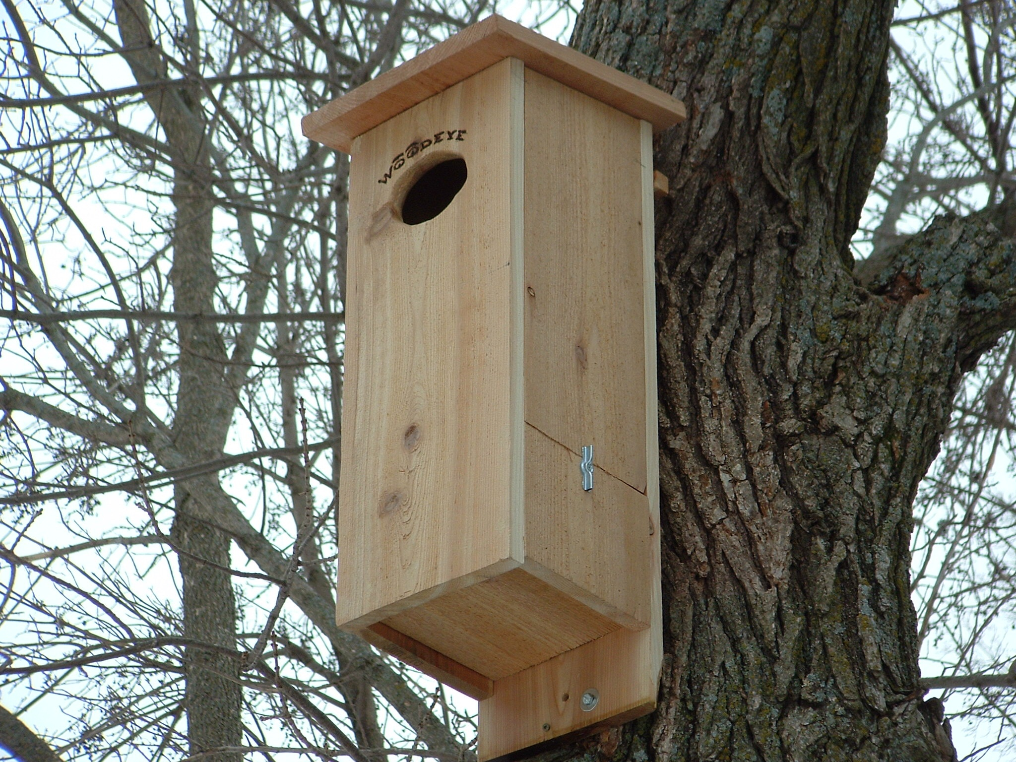 Plans to build Wood Duck House Cleaning PDF Plans