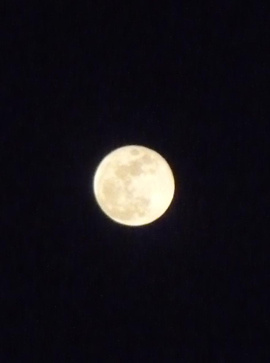small-moon