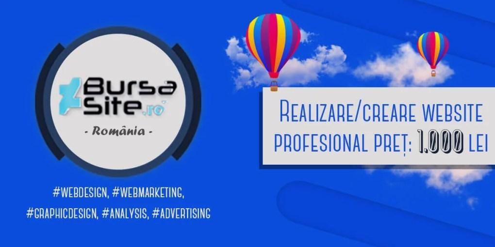 website profesional