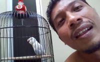 Om Isan Fadjrian latihan bersama Lovebird Rossiddin (YouTube.com)