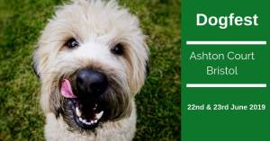 Bristol Dogfest Ashton Court 2019