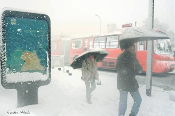 Inverno será rigoroso e deve nevar em Curitiba
