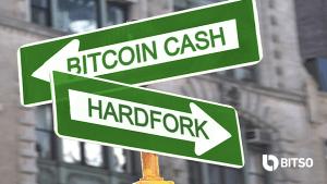 Lee más sobre el artículo Un mes después, ¿qué cripto está ganando la división de BTC Cash?