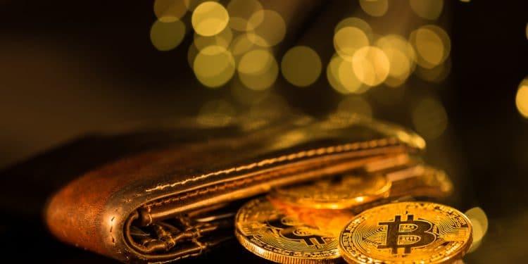 En este momento estás viendo Cinco monederos de Bitcoin para novatos de las criptomonedas