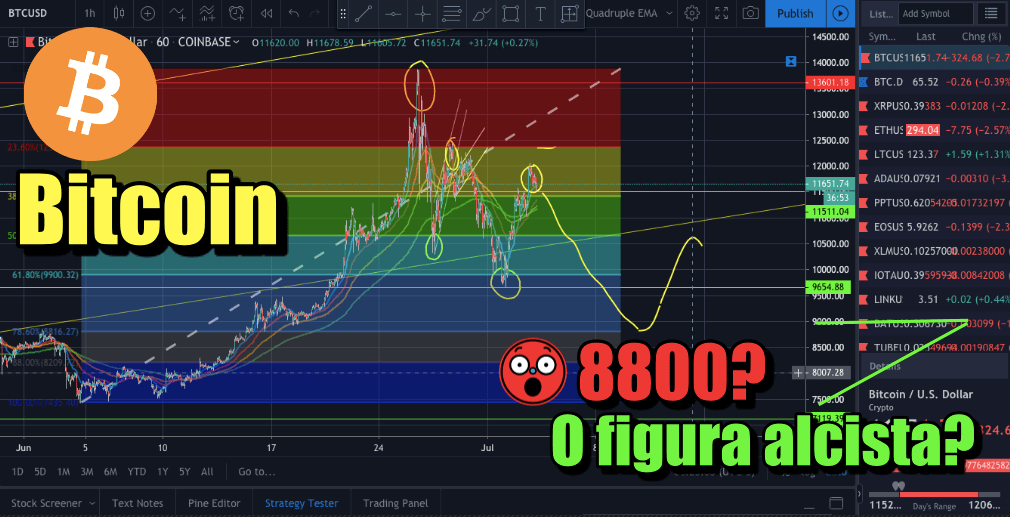 En este momento estás viendo Bitcoin a 8800? o formara figura alcista?