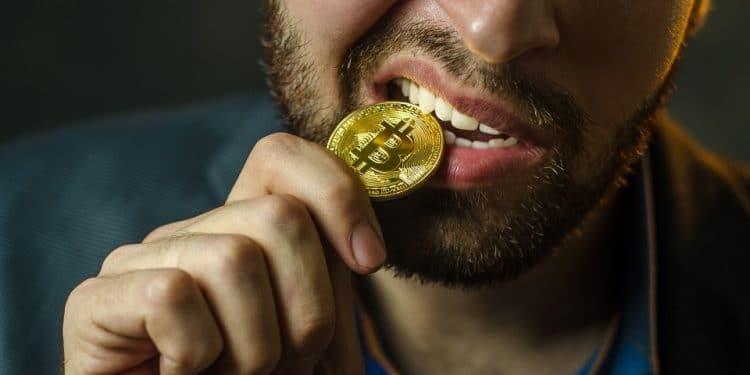 En este momento estás viendo Así es un usuario de criptomonedas: optimista, con control de sus finanzas y aventurero