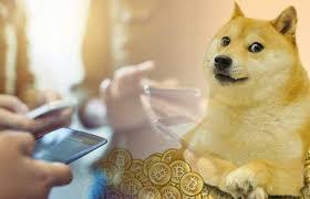 Lee más sobre el artículo Los volúmenes de Dogecoin aumentan 1.900% en 2 días en medio de videos virales de TikTok