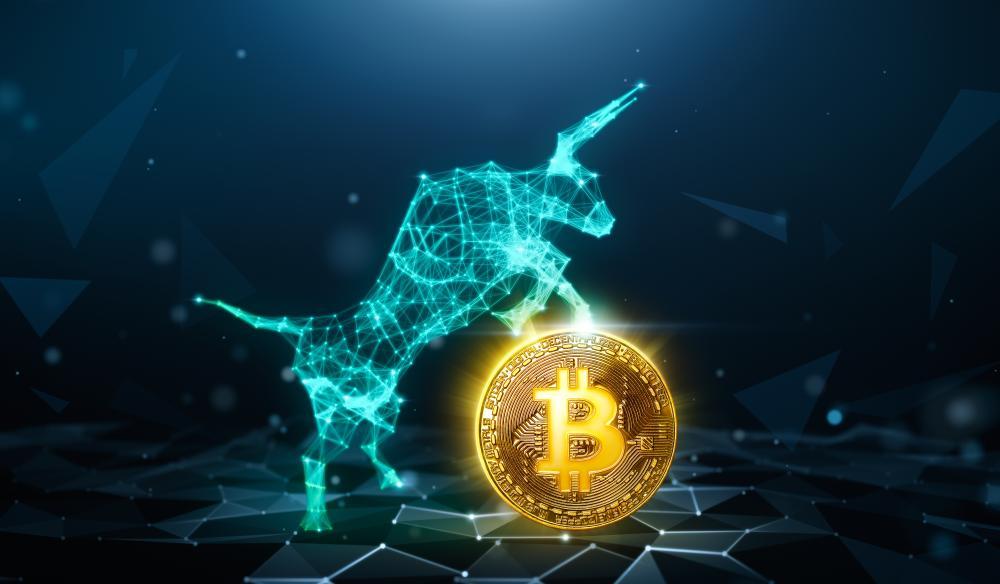En este momento estás viendo Bitcoin (BTC) puede alcanzar «muy fácilmente» $ 50,000 durante 2020