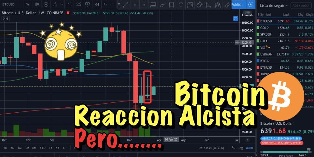 En este momento estás viendo Bitcoin reacción alcista…… PEROOOO