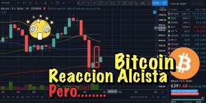 Lee más sobre el artículo Bitcoin reacción alcista…… PEROOOO