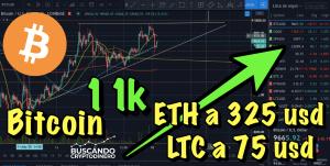 Lee más sobre el artículo Bitcoin a 11k, ETH a 325 y LTC a 75 usd !!
