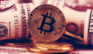 Lee más sobre el artículo Las corporaciones ahora poseen $ 30 mil millones en Bitcoin mientras Bull Run da sus frutos