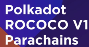 Lee más sobre el artículo Descripción general de las paracaídas Polkadot ROCOCO V1