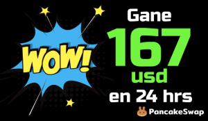 Lee más sobre el artículo 😱 WOW…gane 167 USD en 1 DIA con «Pancakeswap🥞» de forma descentralizada y segura !!!