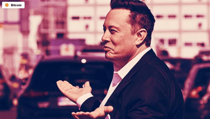 En este momento estás viendo Elon Musk da un consejo para los titulares de criptomonedas