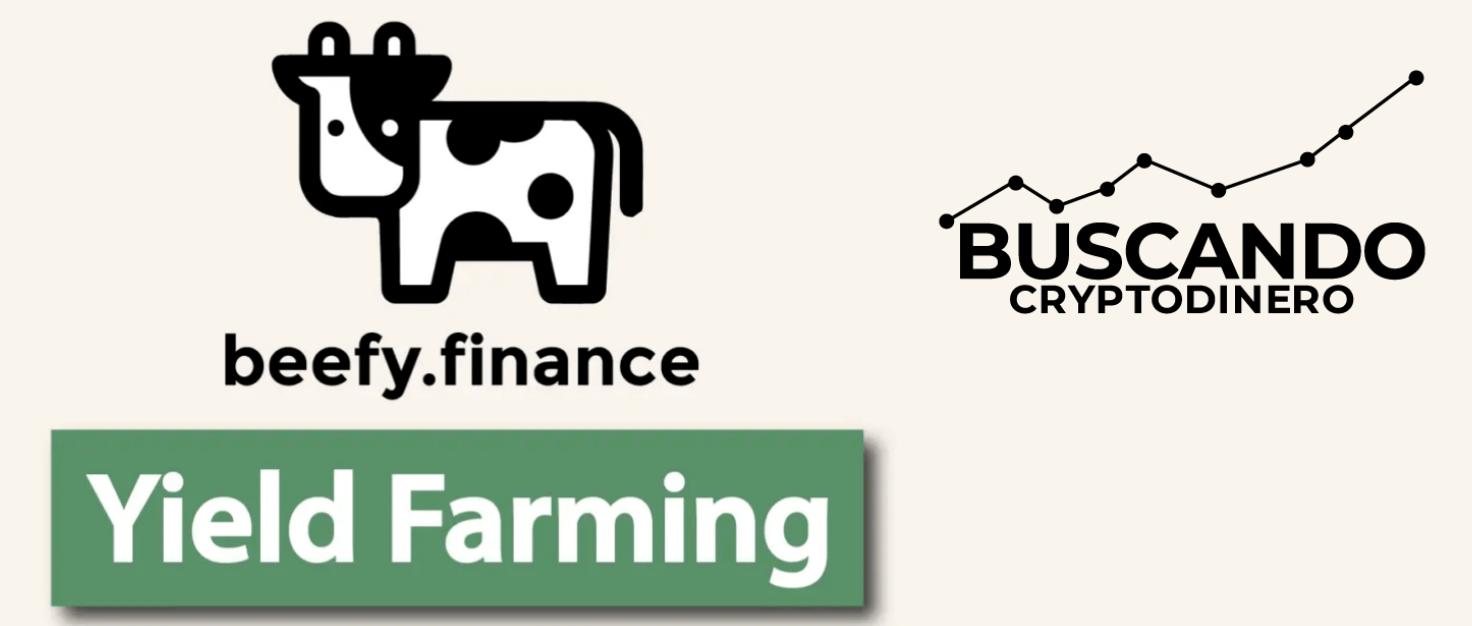 En este momento estás viendo Beefy Finance «BIFI» 🔥 ☞Predicción de PRECIOS 🤑 2021-2026 ☜    Me CONVIENE invertir 💰?? #defi