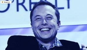 Lee más sobre el artículo La madre de Elon Musk deja caer Dogecoin en SNL, el precio se hunde