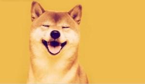 Lee más sobre el artículo ¿Qué es Shiba Inu (SHIB) y por qué está explotando el precio del rival de Dogecoin?