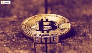 Lee más sobre el artículo Los ETF de Bitcoin comienzan a operar en Brasil, Las Bolsas de Valores de Dubai