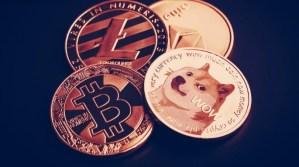 Lee más sobre el artículo Esta startup de bitcoin tiene un plan inusual para mejorar Dogecoin