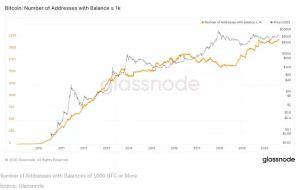 Lee más sobre el artículo 'Bitcoin Rich List' alcanza su máximo histórico