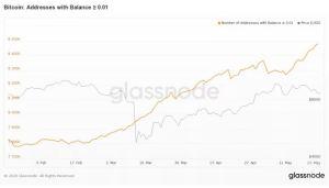 Lee más sobre el artículo A medida que Bitcoin cae a mínimos de 2 semanas, los pequeños inversores parecen estar comprando