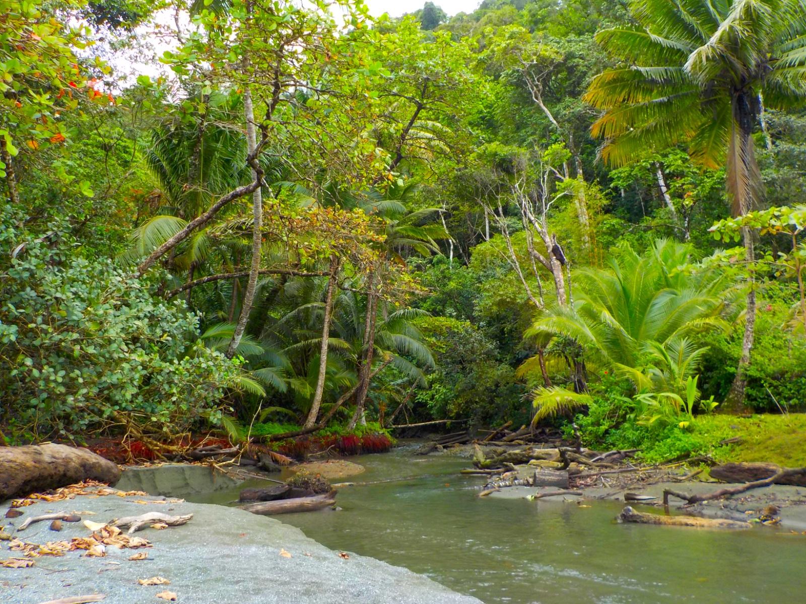 Corcovado, Costa Rica