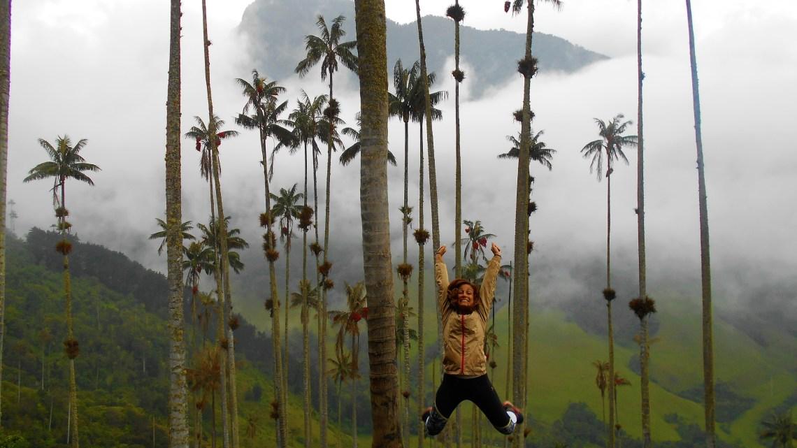 El genuino Valle de Cocora, Colombia
