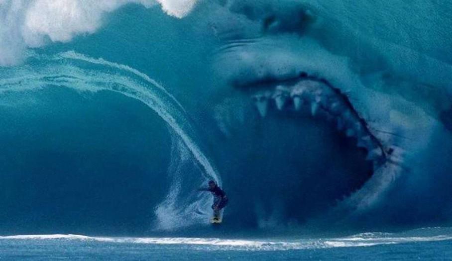 Evidencias que demuestran que el Megalodón existe en nuestros océanos