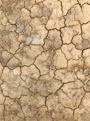 suelo-desierto-de-bardenas