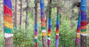 árboles pintados