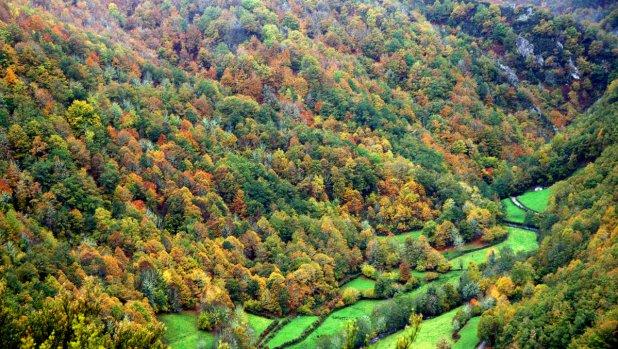 Fuentes del Narcea en otoño