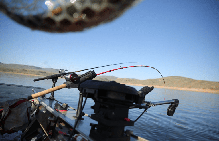 fish rods and a trolling motor