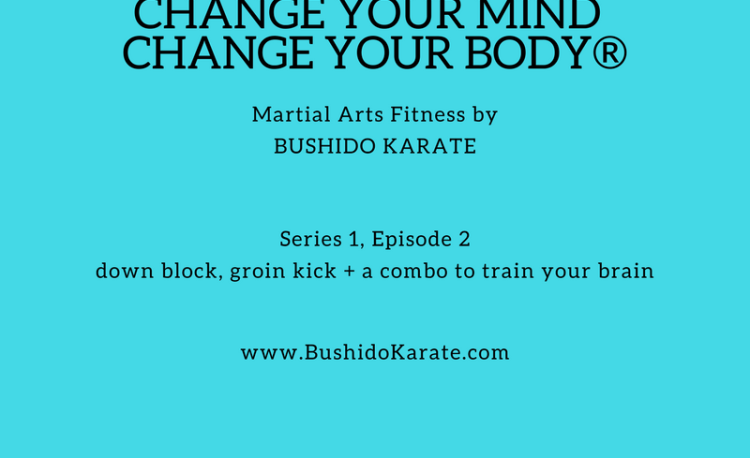 Martial Arts Fitness episode 2