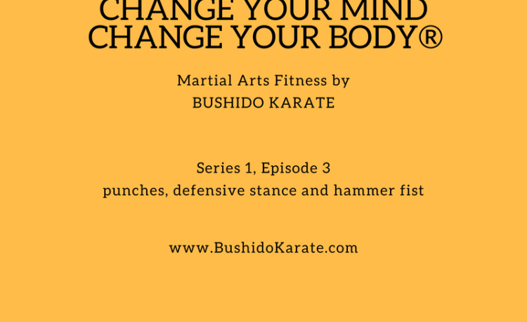 Martial Arts Fitness