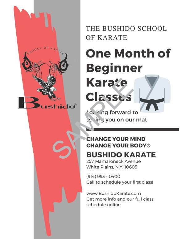 karate gift certificate sample