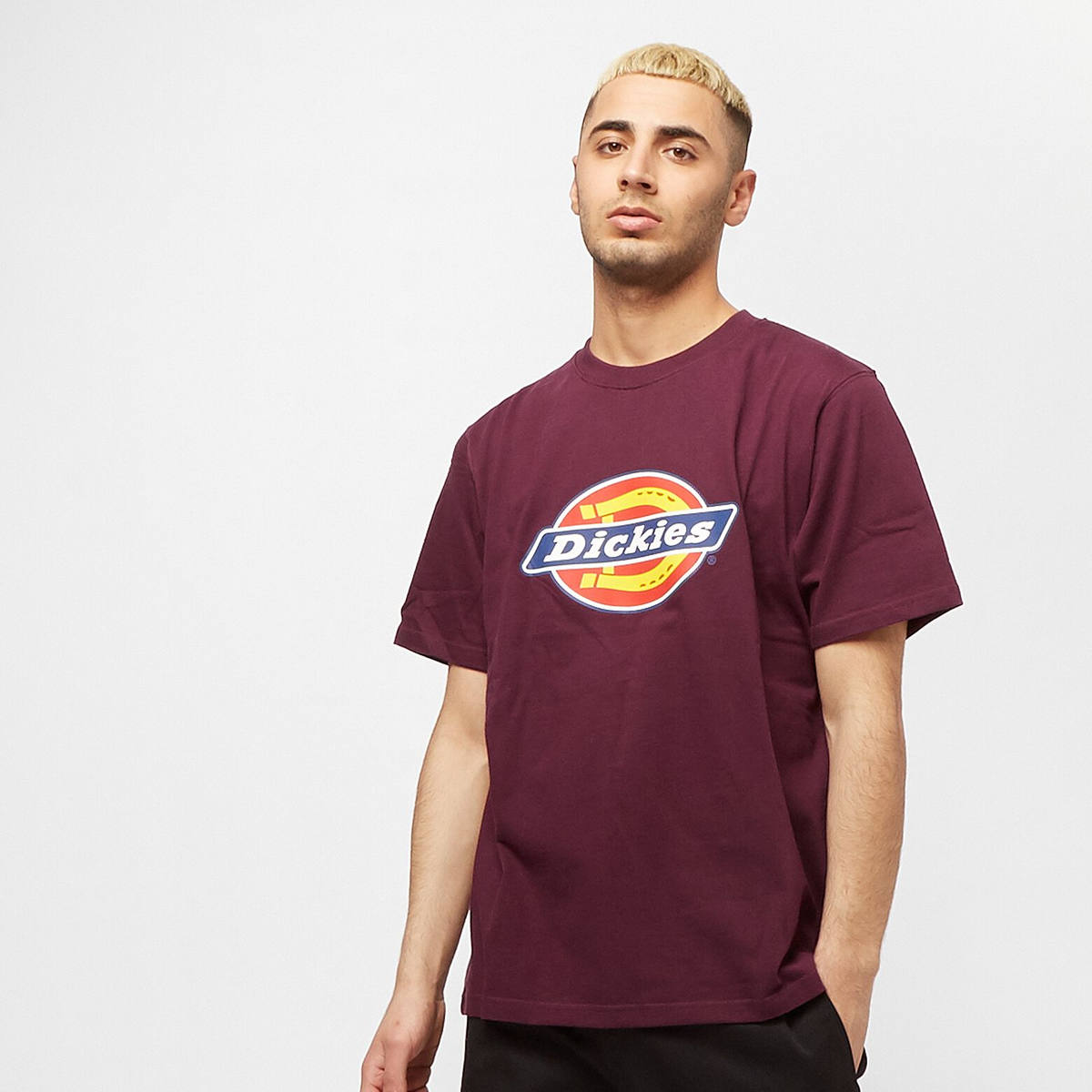Dickies Horseshoe Tee Men