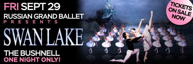 Image result for swan lake the bushnell