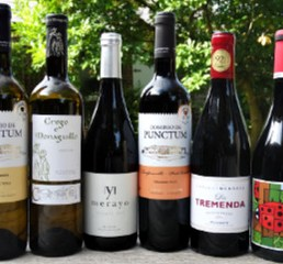 "This Case Offer ""Off the Beaten Track Spain"" is a great way of discovering six distinctive and delicious wines from less well known areas of Spain. All these wines are from small family-run producers. This Case shows that there is more to Rioja in Spain; discover these wine gems at a great price."