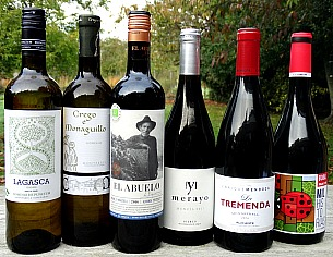 Off the beaten track Spain is a terrific case offer. Discover six different quality wines from small producers. Two amazing white wines and four stunning reds. Three are organic the other producers use organic principles throughout. Great value case at £51 with Tasting Notes.