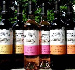 Spanish Organics Case Offer is a brilliant way of discovering the difference of terrific quality organic and biodynamic wines from family producer Dominio de Punctum. Award-winning wines at amazing price.