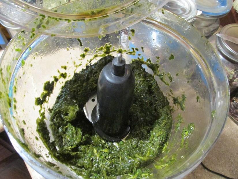 grind fresh comfrey in a food processor or blender until a paste forms
