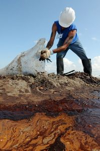 A worker cleans up oily waste on Elmer's Island, just west of Grand Isle, La., May 21, 2010.