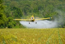 A crop duster in Tennessee