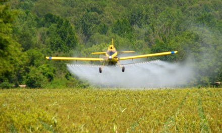Agriculture's Impact on the Environment
