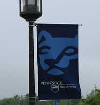 Penn State Scandal Highlights Failures in Leadership and Culture