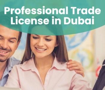 Professional Trade License in Dubai