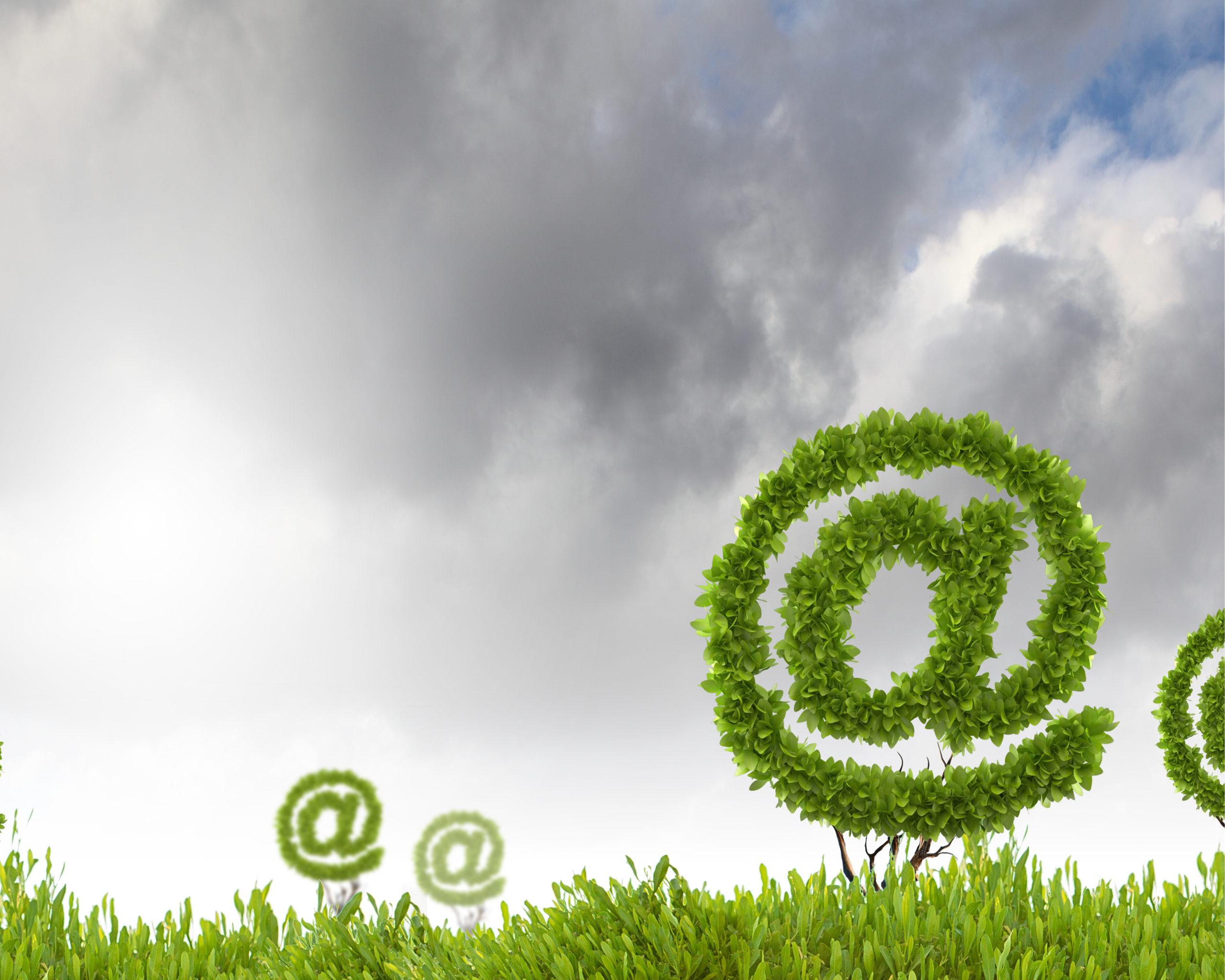 Comment développer un site Internet écologique ?